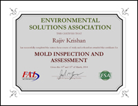 Mold Inspection and Assessment
