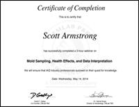 Mold Sampling, Health Effects, and Data Interpretation